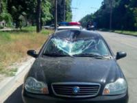 В спальном районе Запорожья олень врезался в машину (Фото)