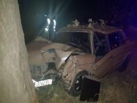 Ночью пьяный водитель влетел на большой скорости в дерево (Фото)