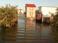 Директор Нацпарка рассказал, что делать, чтобы в Кирилловке не затапливало базы