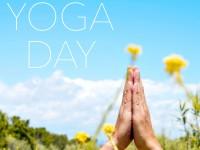 В запорожском парке состоится День йоги с мастер-классами и фудзоной