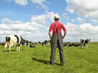 FarmScan – самый полезный сайт для фермеров