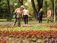 Вандалы изуродовали цветочную композицию на Аллее Боевой Славы, где пройдет празднование Дня Победы