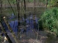 В Запорожской области озеро из фекалий впритык приблизилось к уникальному природному памятнику (Видео)