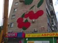 В Мелитополе на стене многоэтажки рисуют первый мурал (Фото)