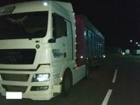 Под Запорожьем водителя грузовика оштрафовали за перегруз более чем на 13 тысяч евро