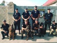 Улицы Запорожья будут патрулировать с собаками