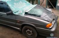 Под Запорожьем водитель насмерть сбил двух пешеходов