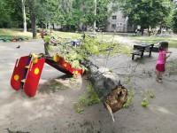 В спальном районе Запорожья дерево рухнуло на детскую карусель с горкой