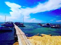 Украинские Мальдивы: сколько стоит добраться на остров Джарылгач из Запорожья
