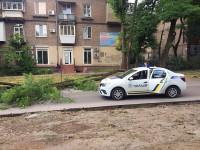 В центре Запорожья на «Ситроен» упало дерево