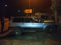 Ночью в Запорожской области пьяный водитель без прав врезался в дерево