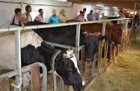 В Запорожской области молочную ферму открыли благодаря американскому гранту