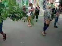 Запорожцы направляются к мэрии с ветками спиленных деревьев в парке Яланского