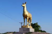 Вандалы сломали рога оленю на въезде в Кирилловку