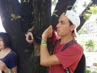Запорожец приковал себя к дереву в опустевшем от деревьев сквере напротив «Украины»