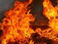 В Запорожской области во дворе дома сгорел киоск по ремонту обуви