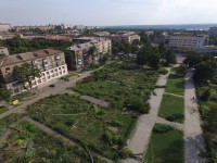 Буряк о массовой вырубке деревьев в сквере Яланского: «Действия городской власти закончились еще в 2012 году» (Видео)