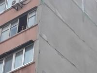В Запорожье женщина выкинула собаку с 7-го этажа — живодерку увезла полиция