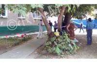 В полиции рассказали о найденном возле мелитопольского дома трупе (Фото)