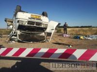 В ДТП под Запорожьем погибли пятеро детей и один взрослый – полиция (Фото 18+)