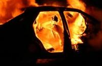 В селе под Запорожьем сгорели «Жигули»