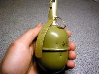 В Запорожской области мужчина кинул гранату в свою сожительницу