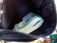 Неудачливый грабитель выбросил сумку, полную золота и долларов