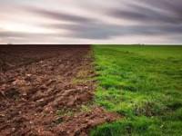Громадам Запорожской области отдали в собственность 17000 га земли