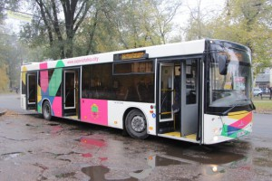 автобу-2-640x427