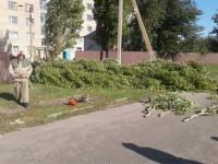 Жительницу Запорожской области убило веткой дерева – СМИ