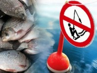 Запорожским рыбакам напомнили о зимнем запрете на ловлю рыбы