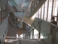 Как живется троим запорожским студентам, которые учатся в Эмиратах (Видео)