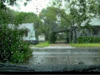 В Запорожье кардинально меняется климат – метеоролог