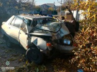 В Запорожье «Славута» врезалась в дерево: есть пострадавший (Фото)