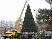 В Запорожье установят сразу 3 главных новогодних ёлки
