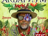 Гребенщиков перенес свой концерт в Запорожье из-за военного положения