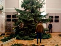 «Несли угрозу»: в запорожском театре объяснили, почему спилили огромные ели
