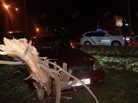 В Бердянске «Ланос» снёс дерево