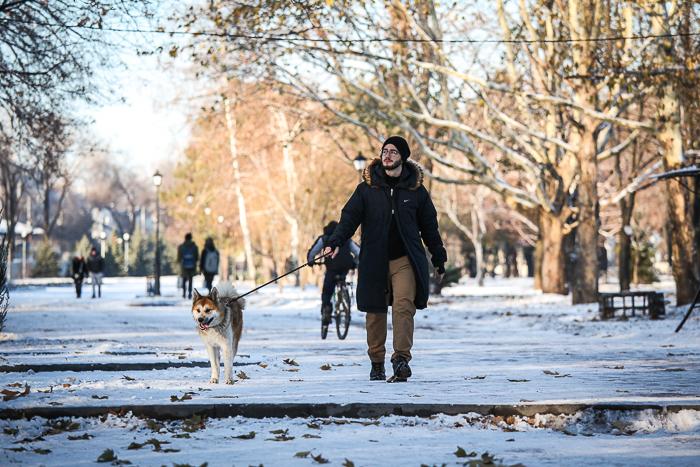 Селфи у елки, хоккей и скандинавская ходьба: как запорожцы встречают снежную зиму (Фоторепортаж)