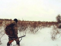 Из-за военного положения в Запорожской области запретили охоту