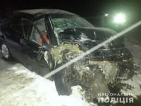 На запорожской трассе лоб в лоб столкнулись авто: один погибший и пятеро пострадавших