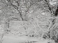На Запорожскую область обрушился мощный снегопад (Фото)