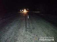 В Запорожской области насмерть сбили пожилого мужчину