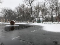 В мелитопольском парке на пруду треснул лед, пока по нему гулял ребенок
