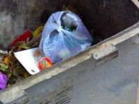 На Бабурке в мусорном баке нашли тело младенца