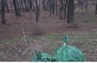 Запорожцы убирают мусор в рамках флешмоба (Фото до и после)