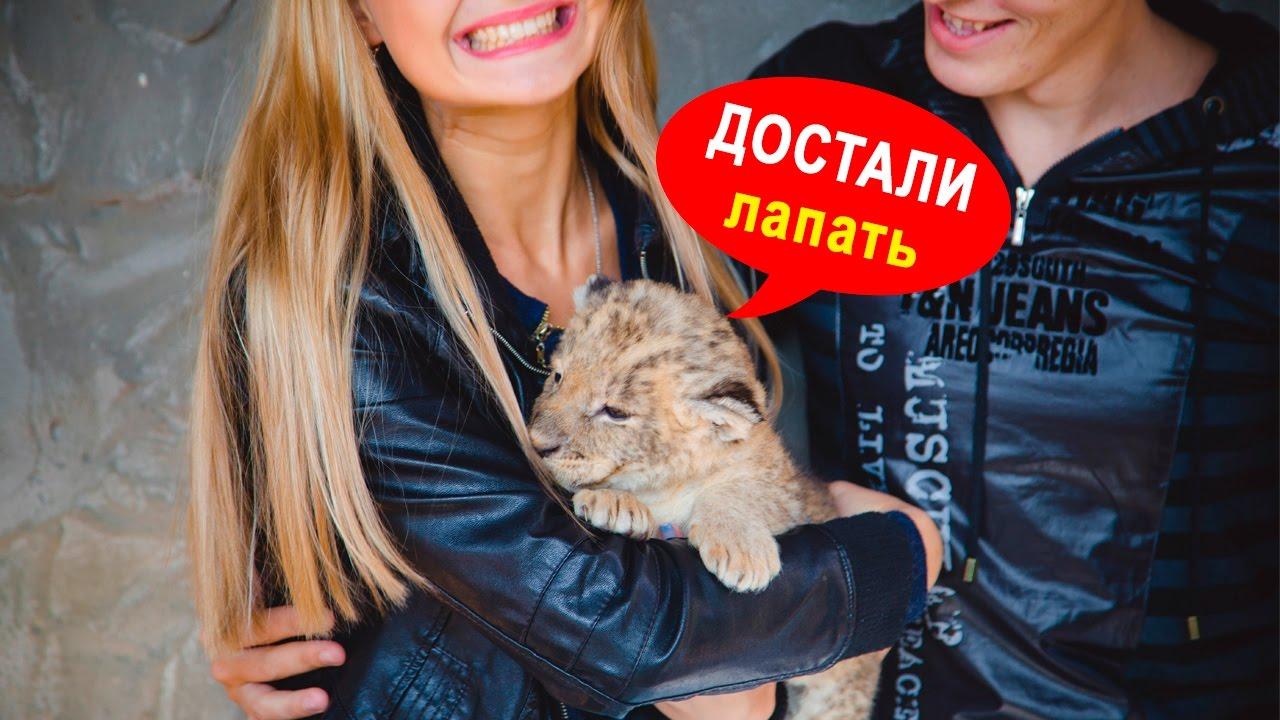 В реабилитационном центре под Запорожьем больше нельзя сделать фото с детенышами хищников