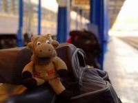 Готовьте весы: «Укрзализныця» изменила нормы провоза багажа
