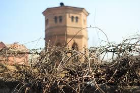 На старинную водонапорную башню наложили арест, чтобы защитить от застройки