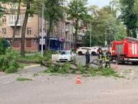 В центре Запорожья на проезжающую «Тойоту» упала ветка: в авто находились дети